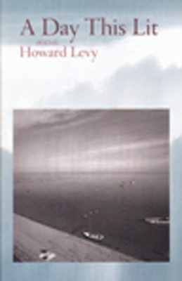 A Day This Lit by Howard Levy