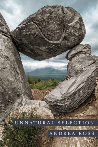 This is the cover for Andrea Ross's memoir, Unnatural Selection. A large gray stone structure stands against a backdrop of plains flora and a mountain in the distance. The placement of the boulder is reminiscent of someone's head, leaning forward to meet the eyes of their baby, which the stone structure on the right resembles.